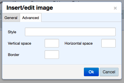 upload and edit image modal Advanced tab with options for adding a vertical and/or horizontal margin and a border-margin